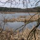 Olešský rybník, 9.4.2007, foto Vojtěch Kodet