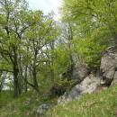 PR Údolí Oslavy a Chvojnice, 25.4.2011, foto Vojtěch Kodet