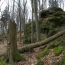 PP Vysoký kámen u Smrčné, 7.4.2007, foto Vojtěch Kodet